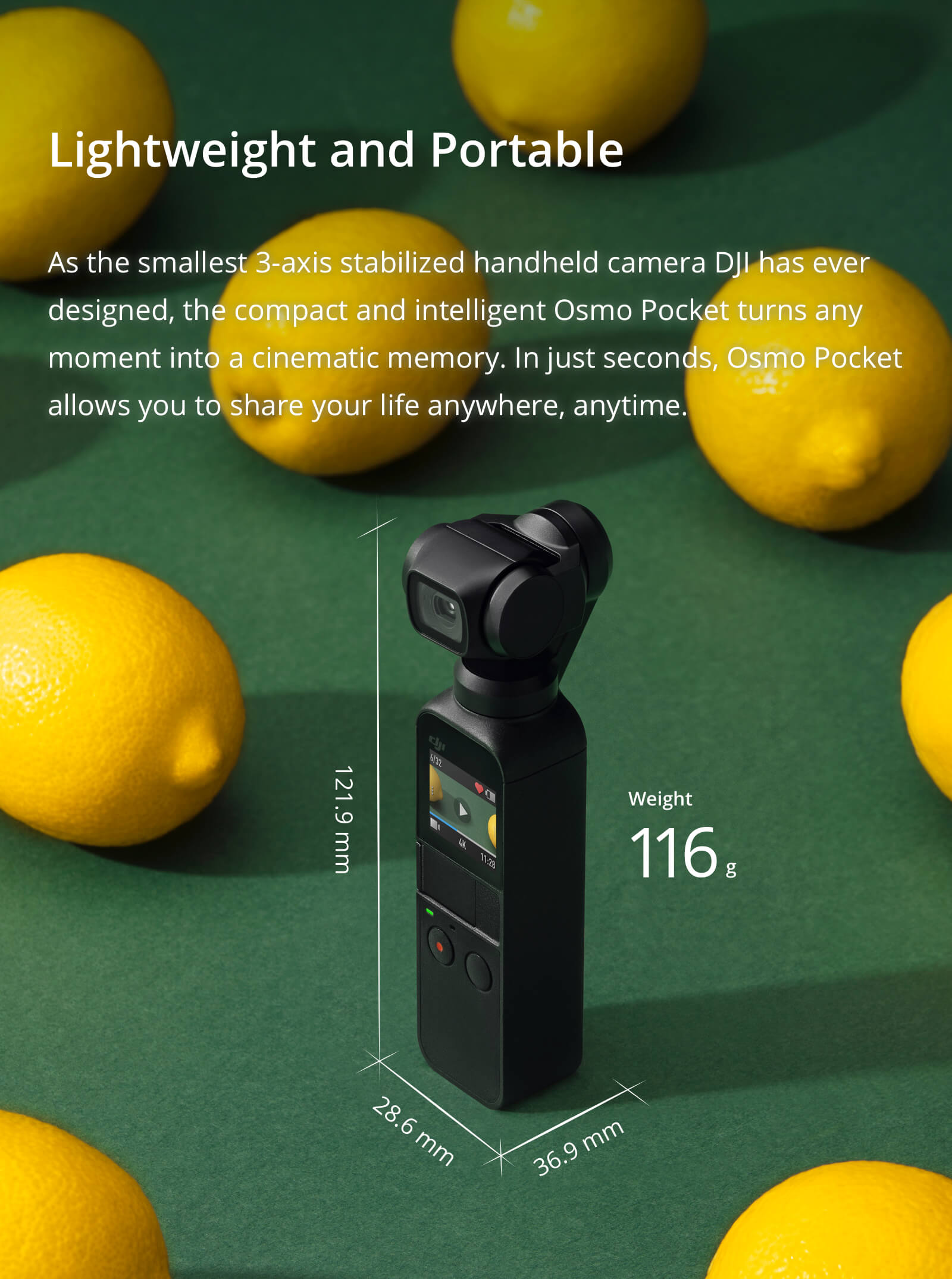 OSMO Pocket - Lightweight and Portable - D1 Store